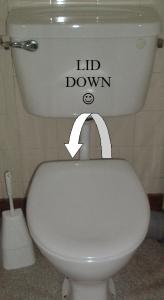 Lid down