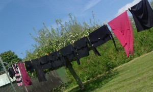 washing line crop
