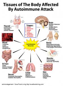 autoimmune2